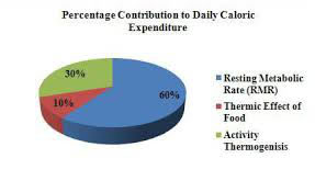 Percentage contribution to daily caloric expemditure